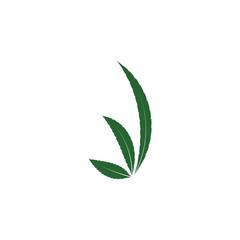 cannabis leaf illustration, green icon