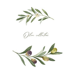 Watercolor vector wreath of olive branches and leaves.