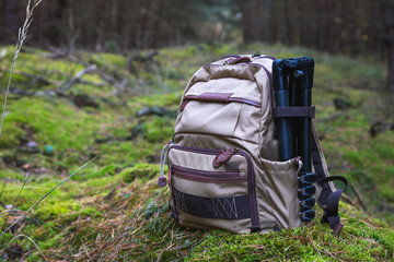 Backpack and tripod in forest. Photographic equipment
