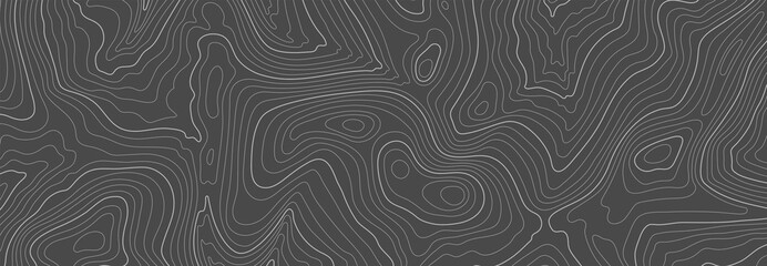 Poster Gray Gray topographic line contour map background, geographic grid map