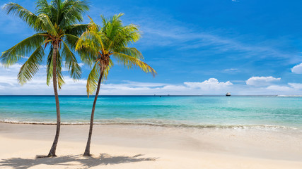 Tropical sunny beach with coco palms and the turquoise sea on Jamaica Caribbean island.