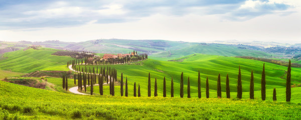 Green spring in Tuscany / Amazing spring landscape with green rolling hills, cypresses and farm houses in the heart of Tuscany, Italy