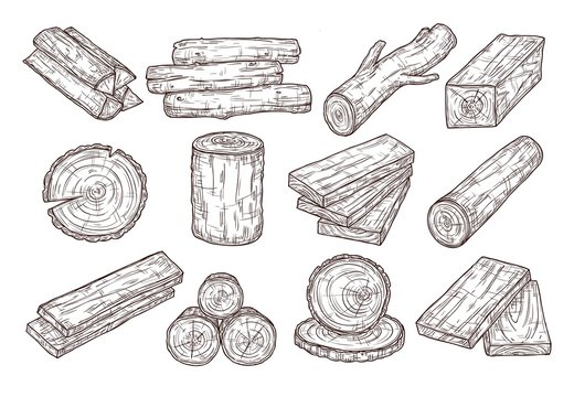 Hand drawn lumber. Sketch wood logs, trunk and planks. Stacked tree branches, forestry construction material vintage vector set. Illustration trunk and timber log, firewood and hardwood