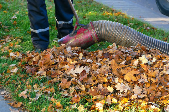 Worker clearing up the leaves using a leaf blower tool..