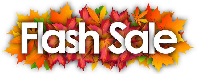 Flash sale word and autumn leaves background