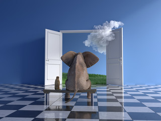 elephant and dog are sitting in the blue room