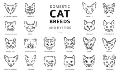 Domestic cat breeds and hybrids linear portraits collection isolated on white. Simple line cat`s head style set