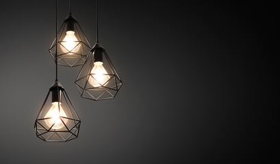Decorative ceiling lights / hanging lights