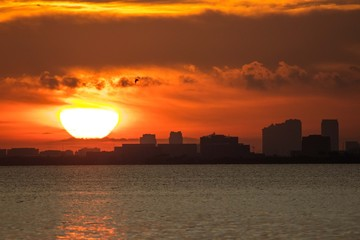 Sunrise Tampa Bay