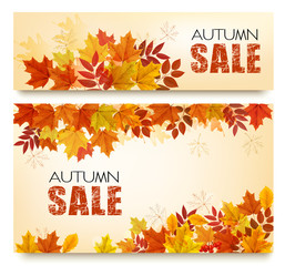 Set Of Two Autumn Sale Banners With Colorful Leaves And Berries. Layered Vector