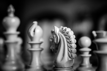 Shallow focus image of wooden Knight chess piece seen in monochrome, shown together with other out of focus pieces prior to a chess match.