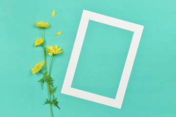 Empty blank photo paper frame with yellow Cosmos flower on pink background.