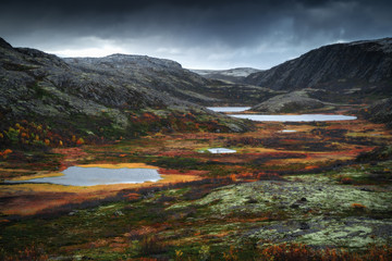 Tundra nature colorful landscape at Kola Peninsula in the autumn. Murmansk Region in Northern Russia