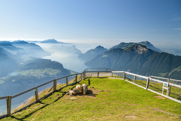 View on Lake Lucerne from Fornalpstock peak above the village of Stoos