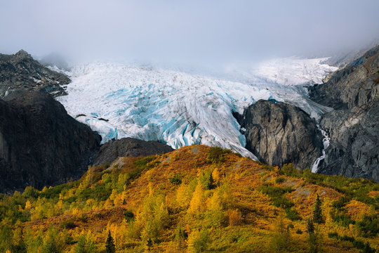 Huge Glacier above yellow and green treesin forest in autumn colors in Alaska