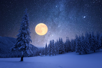 Winter night with starry sky and full moon Fotomurales