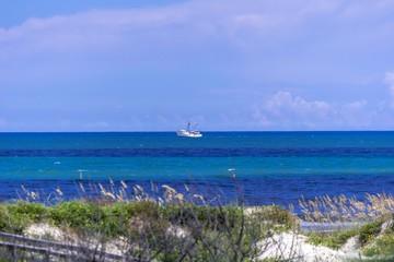 Garden Poster Cyprus ocean scene on Gulf of Mexico