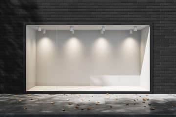 Empty lighted showcase in the daytime. Empty space for advertising. Mock up. 3d rendering Fotomurales