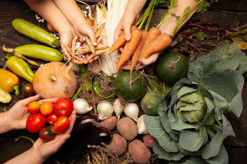Fresh farm vegetables, organic healthy food. Agriculture harvest.