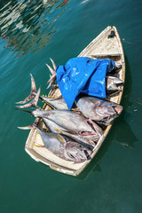 The rowboat full of huge freshly caught tuna delivering fish from the ship to the market in the capital city