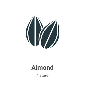 Almond vector icon on white background. Flat vector almond icon symbol sign from modern nature collection for mobile concept and web apps design.
