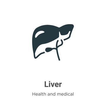 Liver vector icon on white background. Flat vector liver icon symbol sign from modern health and medical collection for mobile concept and web apps design.