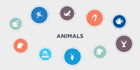animals 10 points circle design. crocodile, crow, dolphin, donkey round concept icons..