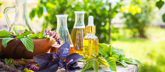 Oil for skin care, massage from natural ingredients, herbs, mint in glass jars and test tubes on a green background in the garden on the nature, natural cosmetics Fotomurales