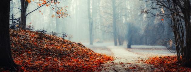 Spoed Foto op Canvas Chocoladebruin autumn