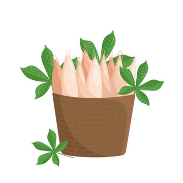 Vector basket with cassava roots and leaves on white background