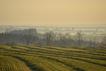 Fresh cut hay on a misty morning