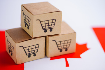 Box with shopping cart logo and Canada flag : Import Export Shopping online or eCommerce finance delivery service store product shipping, trade, supplier concept..