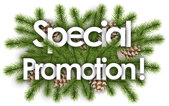 Special Promotion in christmas background - pine branchs