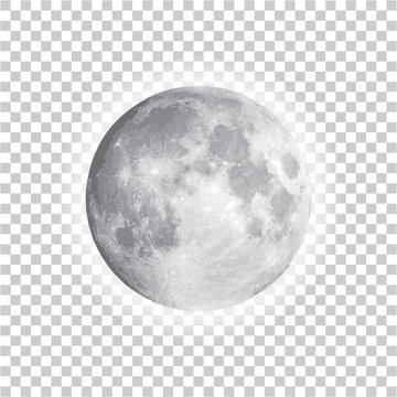 Full moon isolated with background, vector