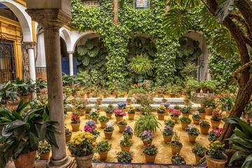 Patio en Calle Agua, Sevilla, Spain