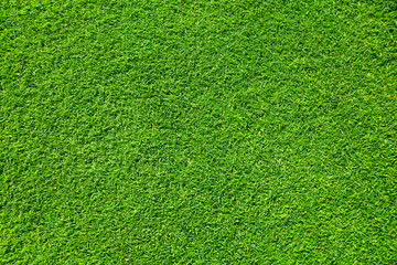 Photo sur Aluminium Herbe Artificial grass background , close up