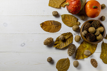 Autumn concept with pumpkins, autumn leaves, bumps and nut on a white rustic background. Autumn decor.