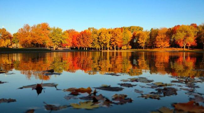 Lac aux castors de Montréal en automne