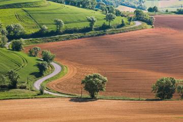 Foto op Plexiglas Pistache Lauragais landscape in Haute-Garonne, France. Agricultural fields in summer.