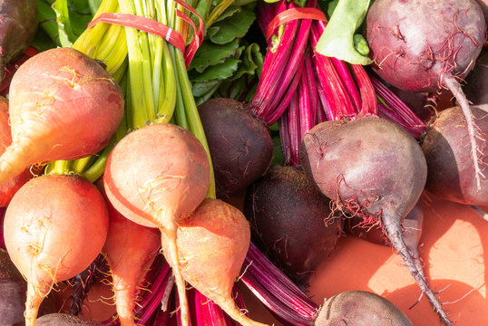 Bunches of red and golden beets at the farmers market