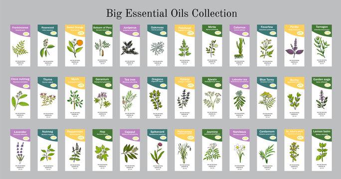 Big set of essential oil labels