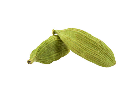 Green cardamom pods isolated on white background with copy space for text or images. Spices, food, cooking concept. Close-up shot.