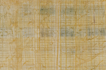 Texture of yellow natural old papyrus paper background