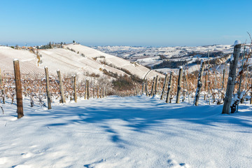 Vineyards on the hill covered in snow in Italy.