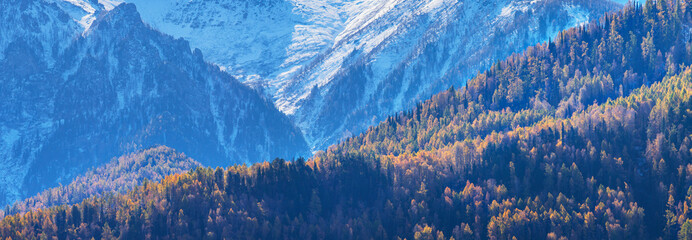 Wall Mural - Panoramic view of autumn nature. Hillside, natural background.