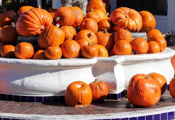 Pumkins on Display in a water fountain