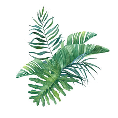 Tropical watercolor bouquet of leaves and branches of a palm tree on a white background.