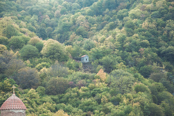 Spoed Foto op Canvas Olijf small house in forest in mountain