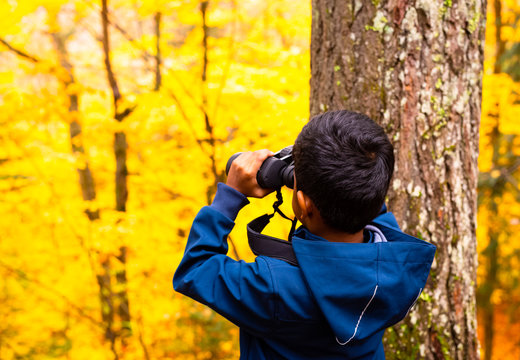 Young boy looking through his binoculars in Algonquin Provincial Park, Canada