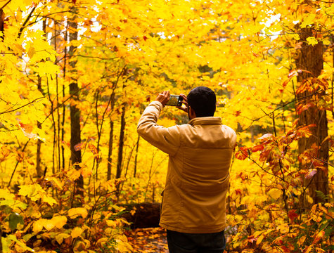 A man taking pictures of the fall colours in Whiskey Rapids Trail in Algonquin Provincial Park